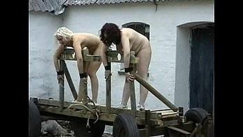 Extreme Training Camp