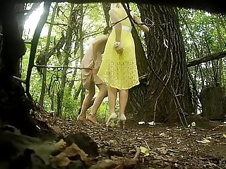 pissing forest