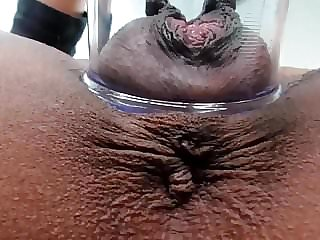 Friends wife pump pussy.mp4